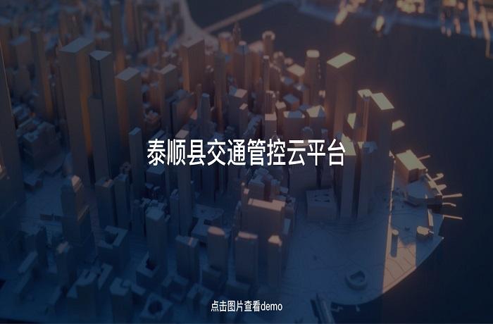 泰顺县交通管控云平台